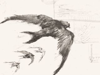Four Swifts With Landscape sketches - Van Gogh (1887)